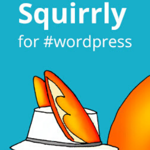 Squirrly Plugin